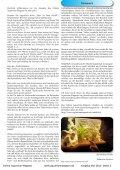 Online Aquarium-Magazin Mai 2010 - Die Wirbellosen - Page 2