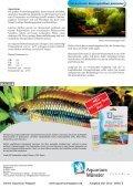Online Aquarium-Magazin Mai 2010 - Die Wirbellosen - Page 5