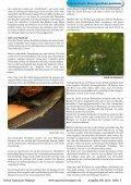 Online Aquarium-Magazin Mai 2010 - Die Wirbellosen - Page 7