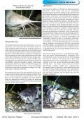 OAM Ausgabe März 2010 - Online Aquariummagazin - Page 3