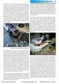 OAM Ausgabe März 2010 - Online Aquariummagazin - Page 6