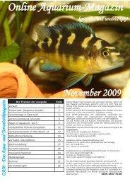 OAM Ausgabe November 2009 - Die Wirbellosen
