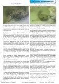 OAM Ausgabe November 2009 - Die Wirbellosen - Page 3