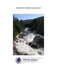 Pollett River Habitat Assessment