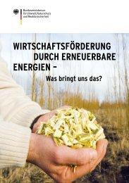 Wirtschaftsförderung durch erneuerbare Energien - Beuth ...