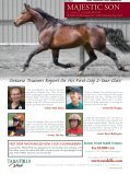 The Stealth Horse - Lambeth Media - Page 5