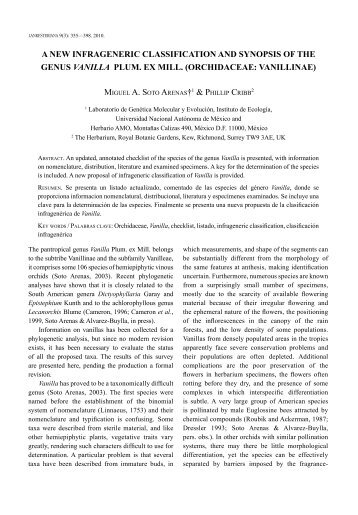 A NEW INFRAGENERIC CLASSIFICATION AND SyNOPSIS OF THE ...