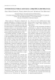 Lankesteriana IV - Universidad de Costa Rica