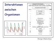 Räuber-Beute-Interaktion = Prädation Definition