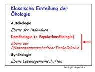Strukturelemente von Populationen