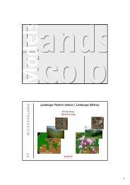Landscape Pattern Indices / Landscape Metrics
