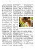 NOIR 20 - Jugendpresse BW - Seite 7