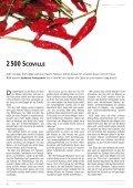NOIR 16 - Jugendpresse BW - Seite 4