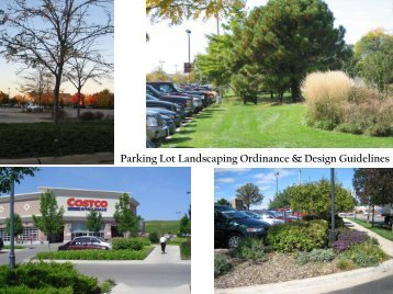 Parking Lot Landscaping Ordinance & Design Guidelines