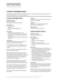 Lascaux Imprägnierungen - Lascaux Colours & Restauro