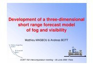 Development of a three-dimensional short range forecast ... - LCRS