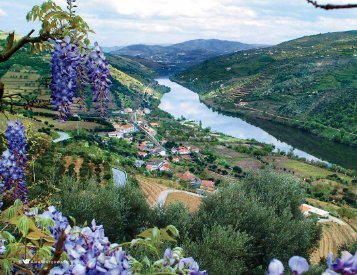 CLASSIC PORT WINES & CHARMING QUINTAS - Amawaterways