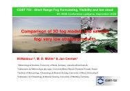 Comparison of 3D fog models and satellite fog/ very low ... - LCRS
