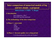 Inter-comparison of numerical models of fog and low clouds ... - LCRS