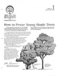 Pruning Handout 1