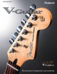 V-Guitar Catalog - Roland