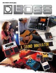 BOSS Catalog 2010 - Roland
