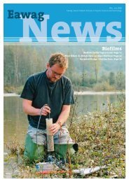 Eawag News 60e: Biofilms