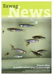 Eawag News 64f: Poisson zèbre: un modèle animal pour l ...