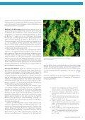 Eawag News 60d: Biofilme - Seite 7