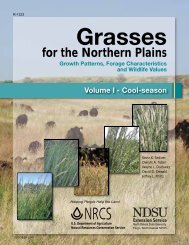 Grasses for the Northern Plains - Plant Materials Program - US ...