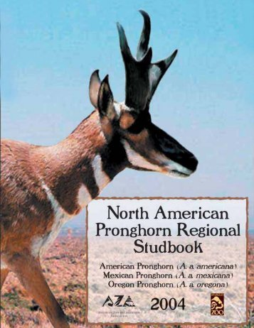 Pronghorn antelope management - Library