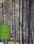 Poised to Rebound - Oregon Forest Resources Institute - Page 2