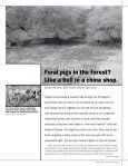 New Conservation Strategy Feral Pigs Wreak ... - State of Oregon - Page 7