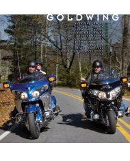 GOLDWING - Lidor.pl