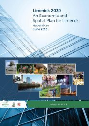 An Economic and Spatial Plan for Limerick Appendices
