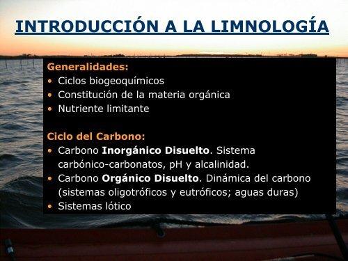 Carbono orgánico