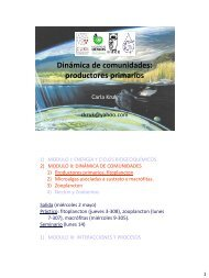 Dinámica de comunidades: productores primarios