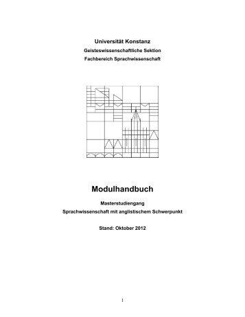 Modulhandbuch MA Sprachwissenschaft mit Anglistischem ...