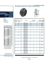 IPS HDPE Fittings - Puerto Rico Suppliers .com