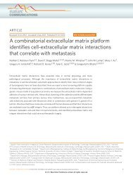 A combinatorial extracellular matrix platform identifies cell ... - MIT