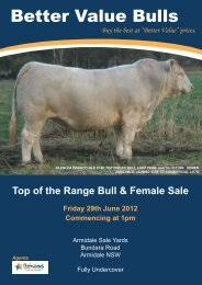 Better Value Bulls - Charolais Society of Australia
