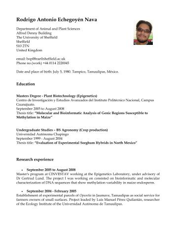 curriculum vitae aps group index page university of sheffield