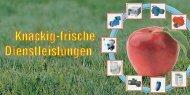 Scheckheft im PDF - bei der Harzer Antriebstechnik GmbH