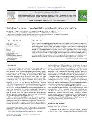 Vinculin's C-terminal region facilitates phospholipid membrane ...