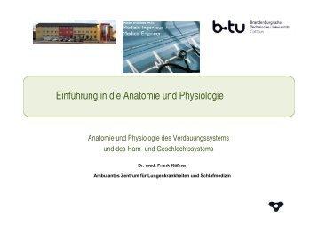 Anatomie und Physiologie des Verdauungssystems - Ambulantes ...