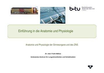 Einführung in die Anatomie und Physiologie - Ambulantes Zentrum ...