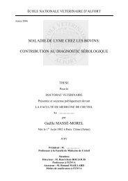 MALADIE DE LYME CHEZ LES BOVINS: CONTRIBUTION AU ...