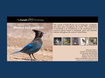 Western Backyard Birds - Macaulay Library