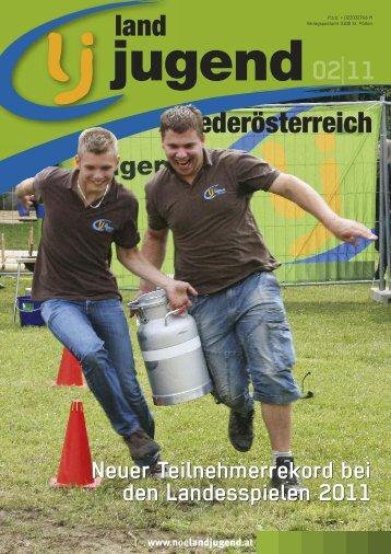 land niederösterreich 02|11 - madergrafisch