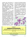 Borreliose - ZAL-Magazin - Page 7